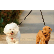 On the Go Double Leash Coupler